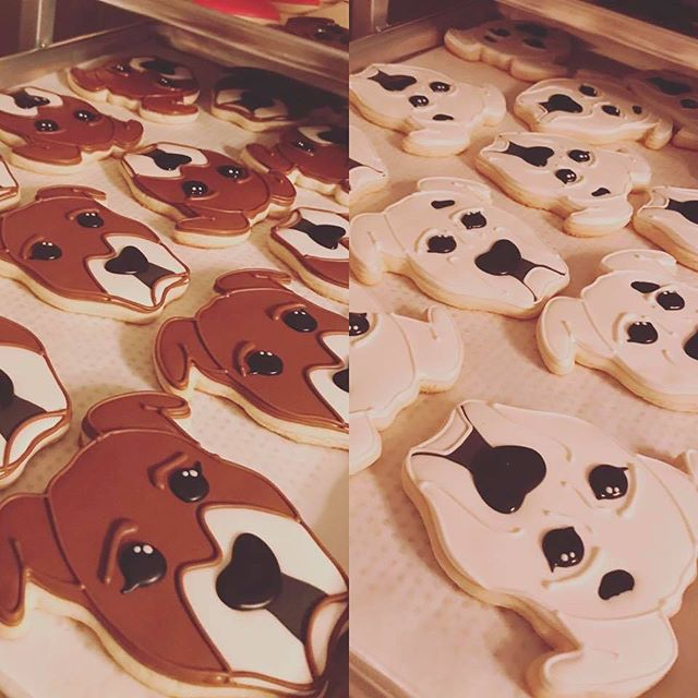 Pitbull and Boxer Cookies