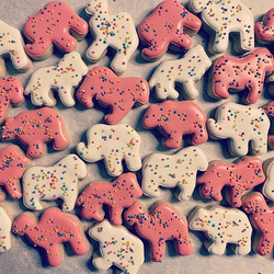 Animal Crackers 😍
