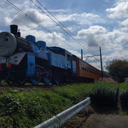 Thomas the Tank Engine, Shimada
