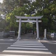 Road near Miho no Matsubara