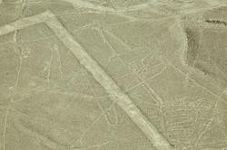 Nazca_6