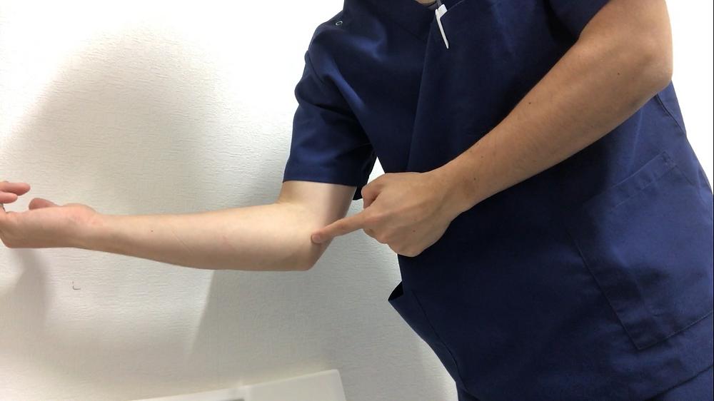 肘の痛み エコー検査 野球肘検診