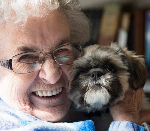 Inside-Woman-with-Ewok-Dog-iStock-924059