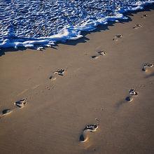 Instagram - Where will your feet take yo