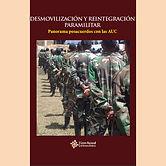 2015 DESMOVILIZACION Y REINTEGRACION PAR