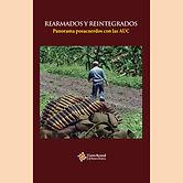2015 REARMADOS Y REINTEGRADOS AUC.jpg