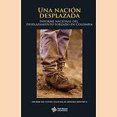 2015 UNA NACION DESPLAZADA.jpg