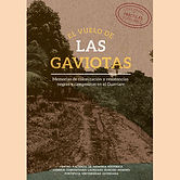 2018 EL VUELO DE LAS GAVIOTAS.jpg