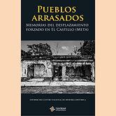 2015 PUEBLOS ARRASADOS.jpg