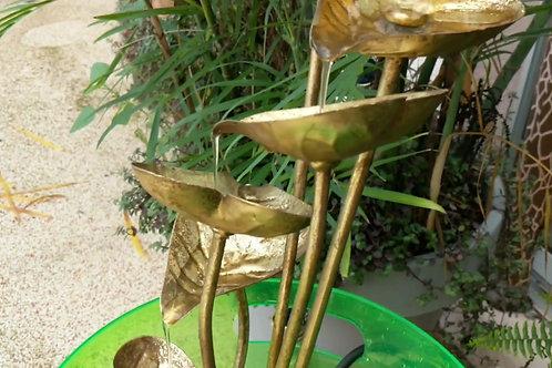 Anthurium Gold