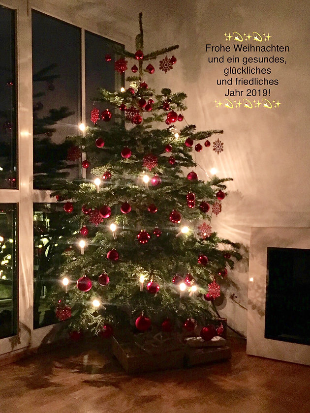 Besinnliche Weihnachten Und Einen Guten Rutsch Ins Neue Jahr.Frohe Weihnachten Und Einen Guten Rutsch Ins Neue Jahr