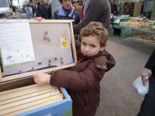 Le 13 mars 2016 - Animation d'ateliers au marché de Castanet Tolosan