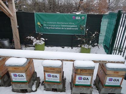 Ruches de l'entreprise GA sous la neige