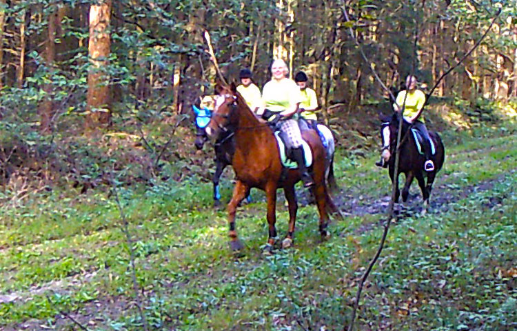 Wanderritt2016_Wildtierkamera14