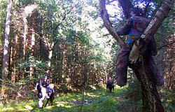 Wanderritt2016_Wildtierkamera12