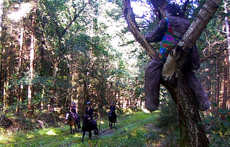 Wanderritt2016_Wildtierkamera9