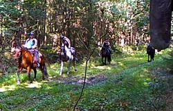 Wanderritt2016_Wildtierkamera10