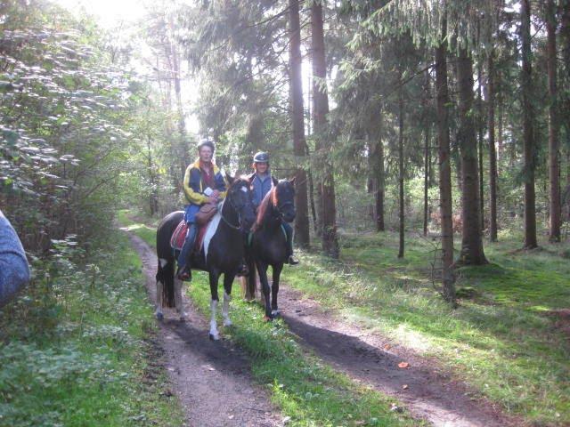 Wanderritt2015_68