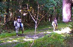 Wanderritt2016_Wildtierkamera31