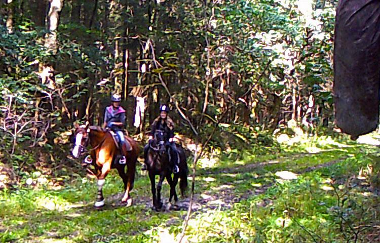 Wanderritt2016_Wildtierkamera24