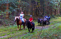 Wanderritt2016_Wildtierkamera20