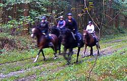 Wanderritt2016_Wildtierkamera28