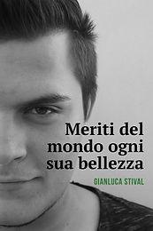 Stival_cover.jpg