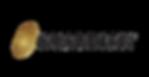 guardian-logo-color-min.png