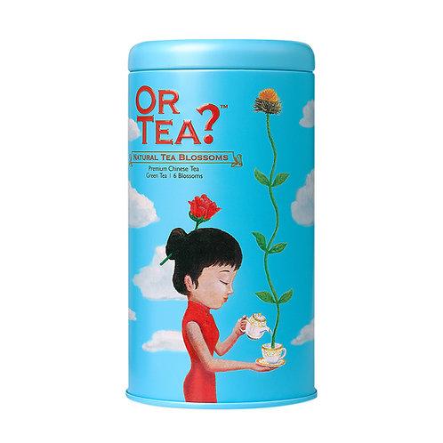 Fleurs de thé naturelles - Thé blanc floral (42g, 6pcs)