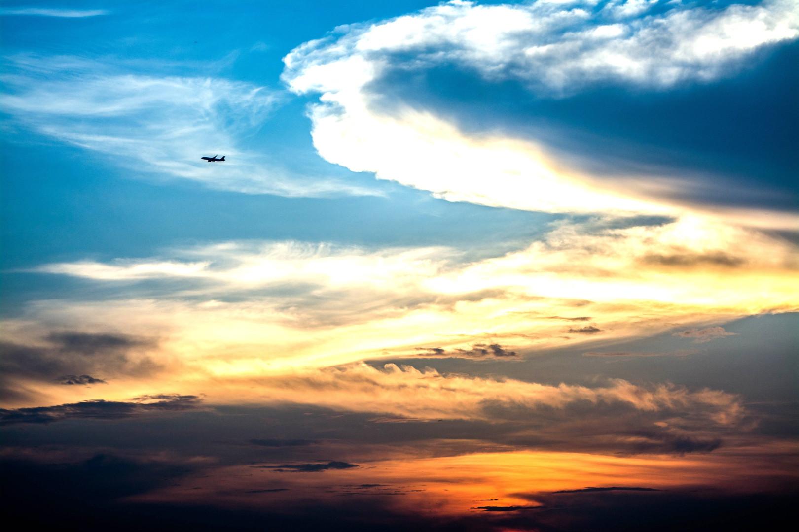 Flying at Dusk.jpg