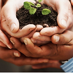Church Planting FB Event Cover (1).png