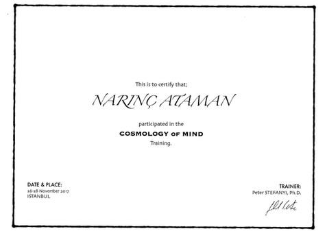 Erickson College Cosmology of Mind