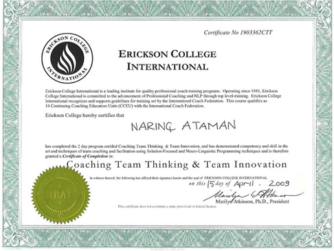 Erikcson College Team Innovation