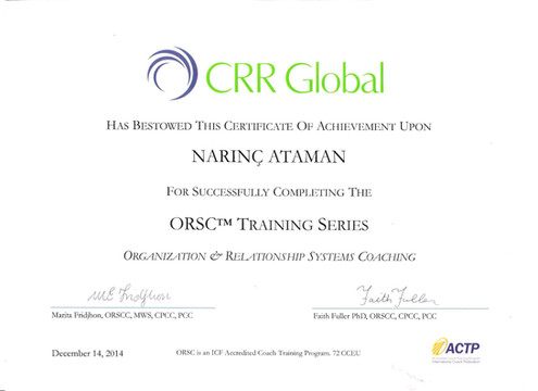 CRR Global ORSC - I