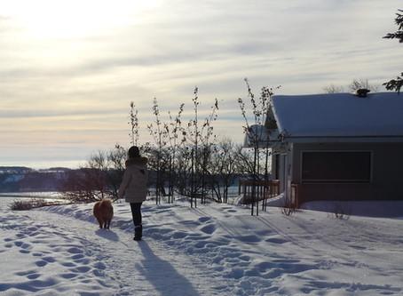 Fabiola, Alexandre et leur chien Loki ayant vécu 18mois à Montréal