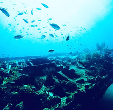 carlisle shipwreck.PNG