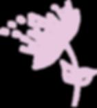 Dandelion-Pink.png
