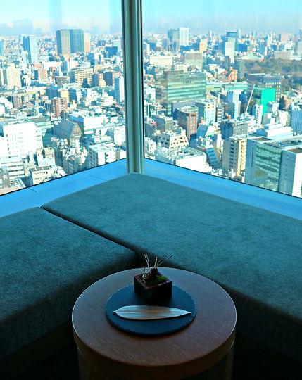 Tokyo Best Hotels