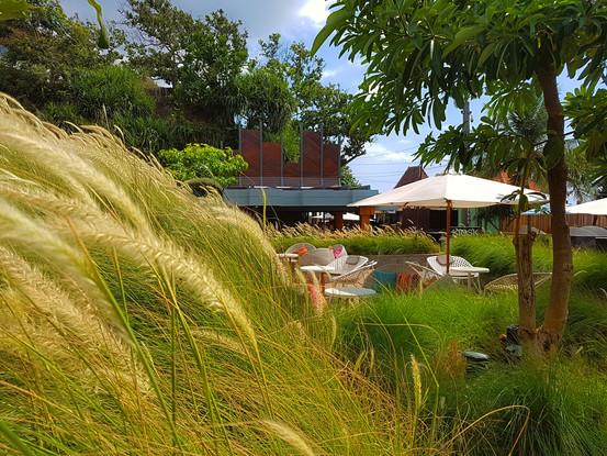巴厘岛英迪格