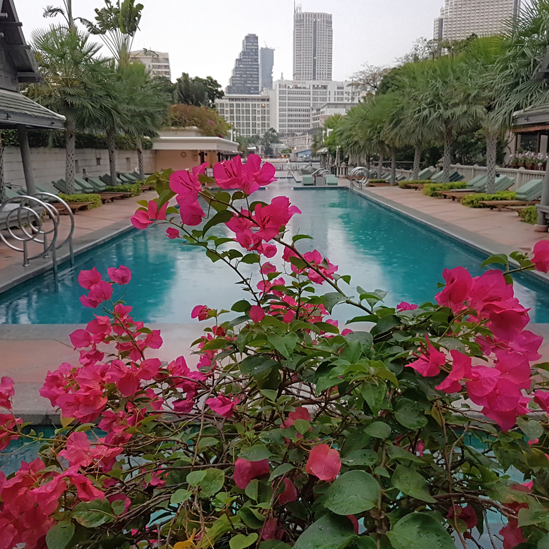 LCO Reviews The Peninsula Bangkok
