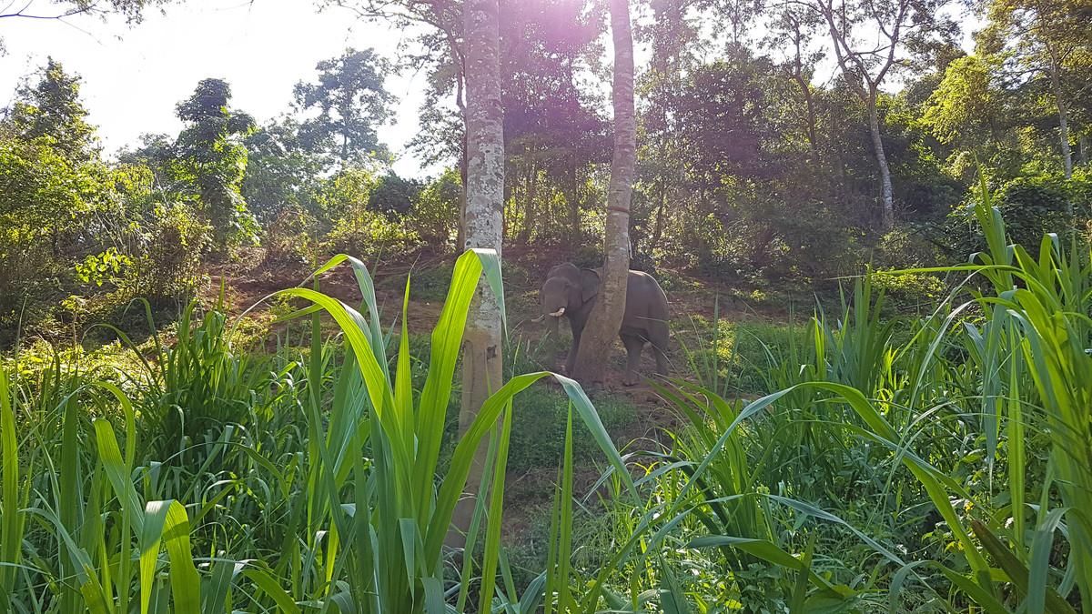 LCO Destinations Chiang Rai Thailand
