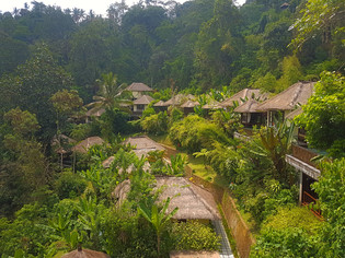 Hanging Gardens of Ubud