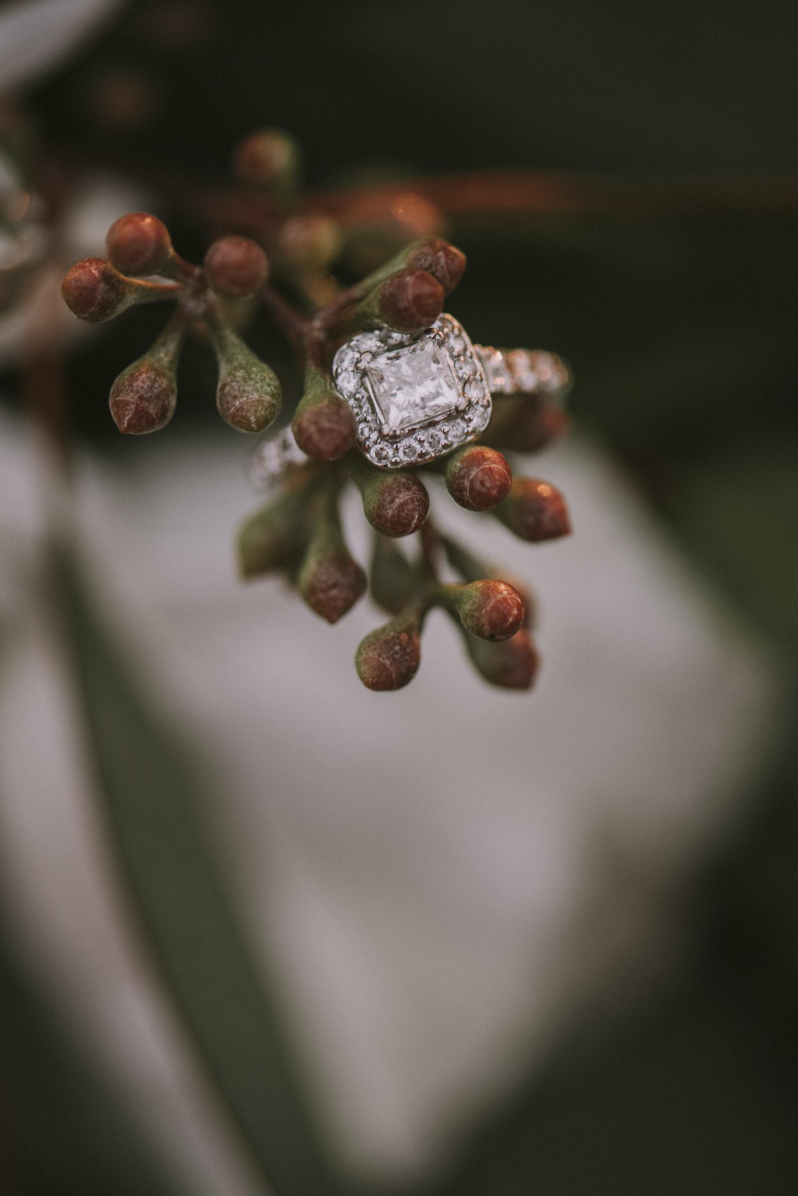 Pine Lodge Engagement
