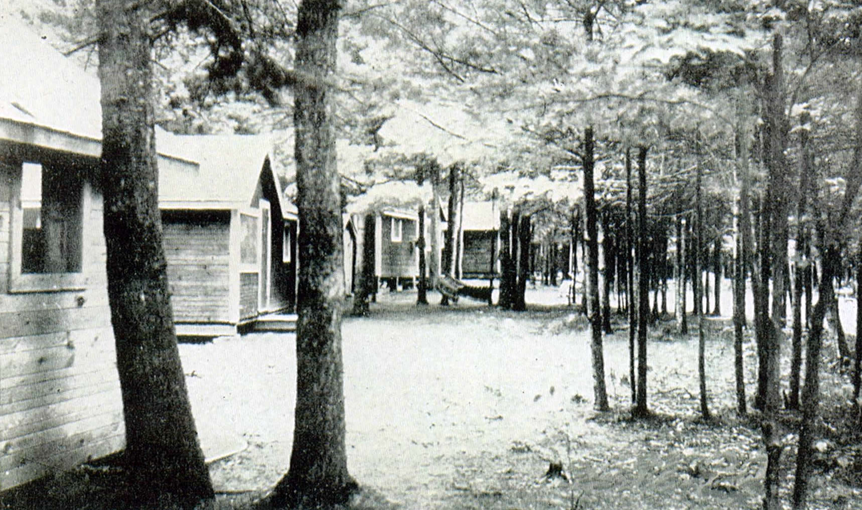 Cabins at Pine Lodge