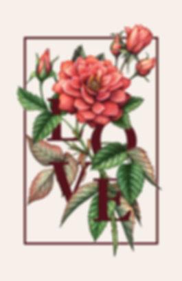 rose final.jpg
