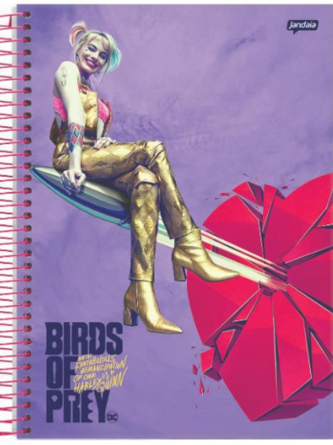 Caderno Aves de Rapina 10 Matérias