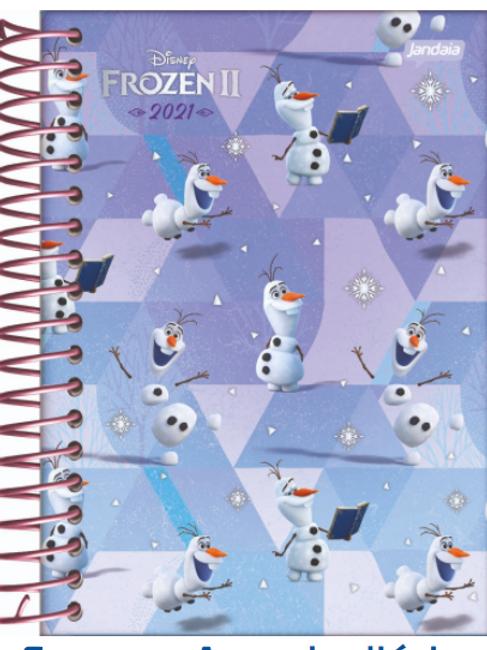 Agenda 2021 Frozen II