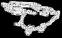 PIGASUS logo.PNG