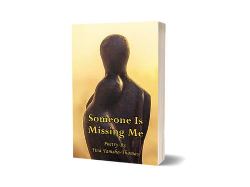 EBOOK: Someone Is Missing Me