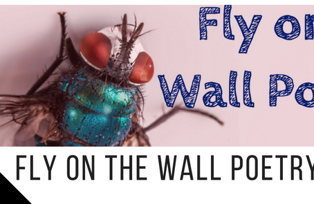 The Launch of Fly on the Wall Poetry Press!